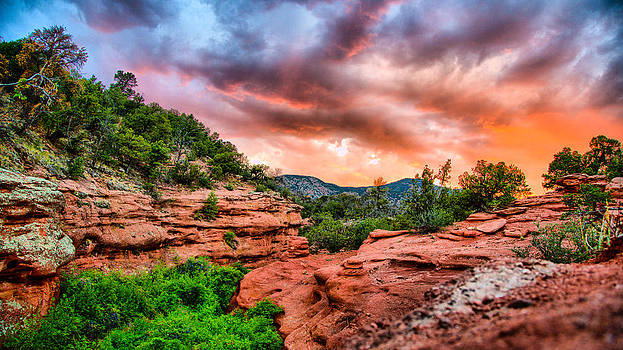 Red Canyon by Donald J Gray