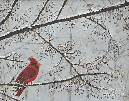 Red Cardinal In Snow by William Ohanlan