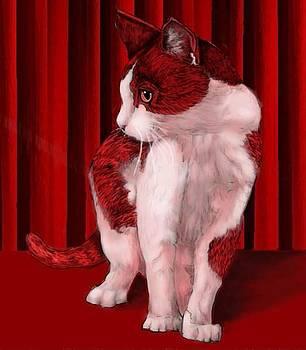 Red Cat by Pamela Shelton