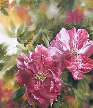 Alfred Ng - red chinese peony