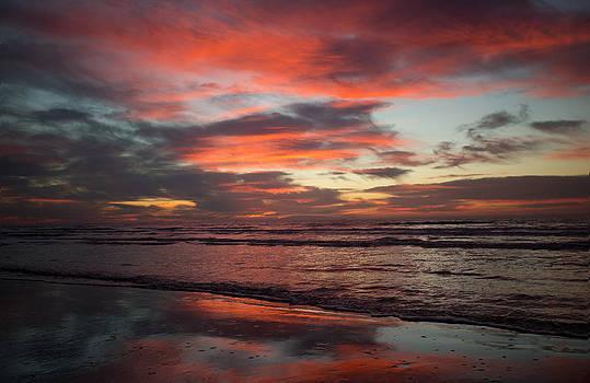 Red Dawn by Sharon Jones