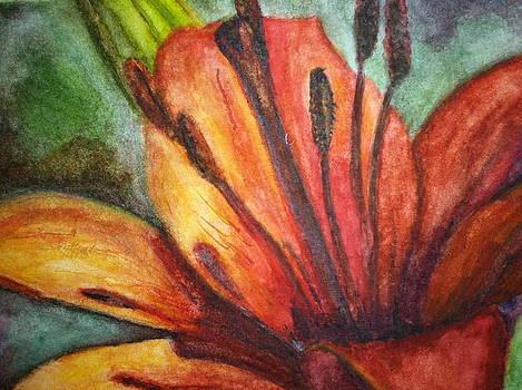 Red Day Lily by Carol Warner