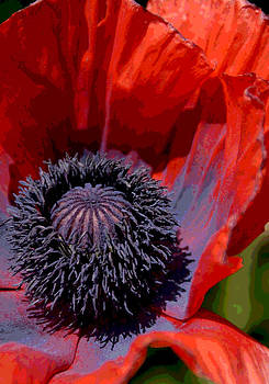 Red Dress by Darlene Watson