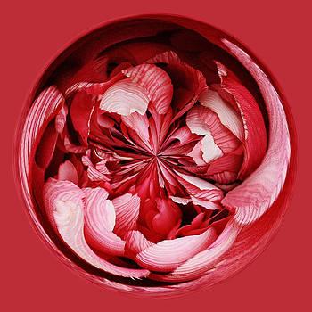 Paulette Thomas - Red Flower Orb