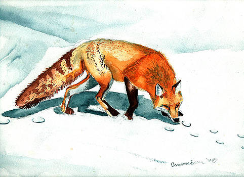 Genevieve Esson - Red Fox