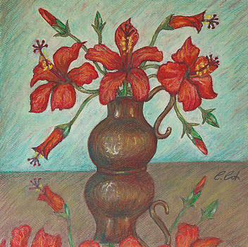 Red Hibiscus with Blue Background by Claudia Cox