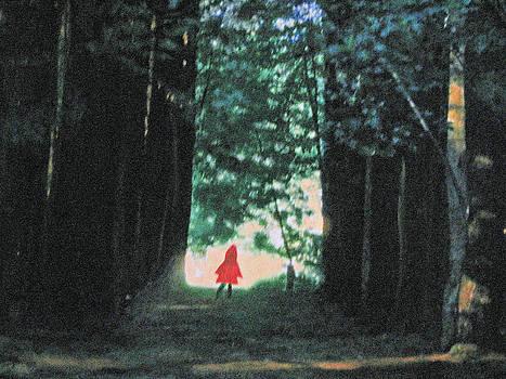 Red Hoodie in the Woodie by Linnie Greenberg