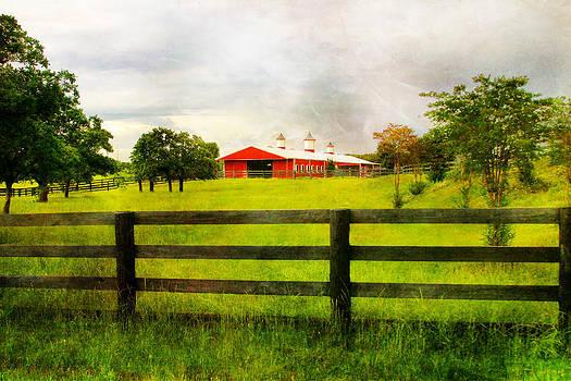 Red Horse Barn by Joan Bertucci
