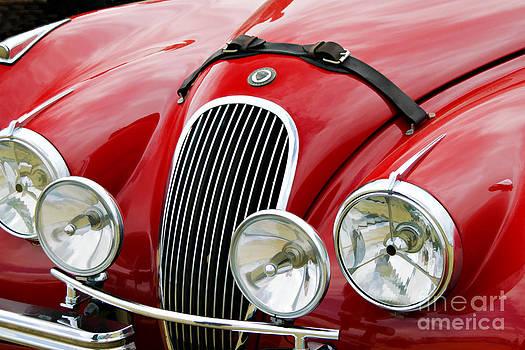 Red Jaguar by Tess Baxter