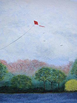 Red Kite 2 by Chip Picott