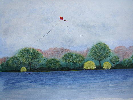 Red Kite by Chip Picott
