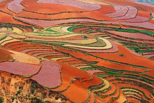 Red Land 01 by Jason KS Leung