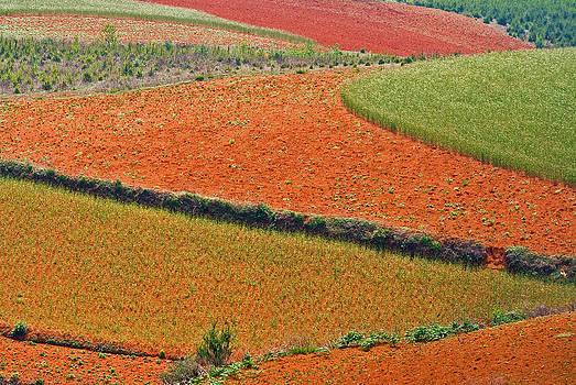 Red Land 05 by Jason KS Leung