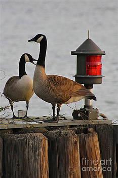 Rick  Monyahan - RED LIGHT