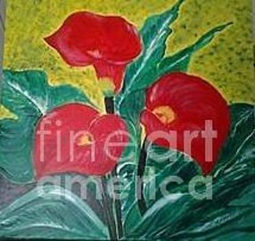 Red lilies by Saman Khan
