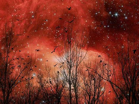 Gothicolors Donna Snyder - Red Night