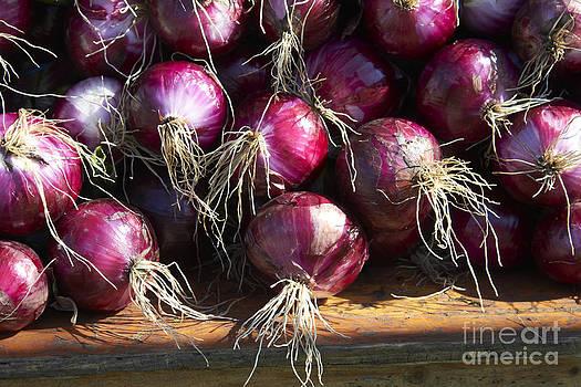 Red Onions by Tony Cordoza