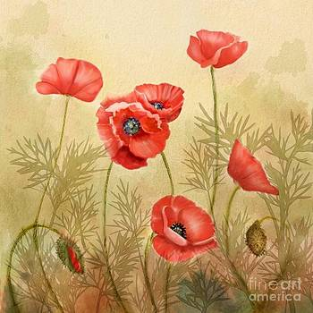 Red Poppies Three by Joan A Hamilton