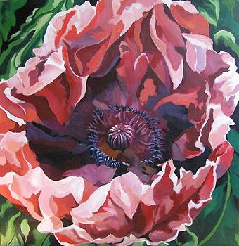 Alfred Ng - red poppy