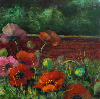 Red Poppy Garden by Elaine Bailey