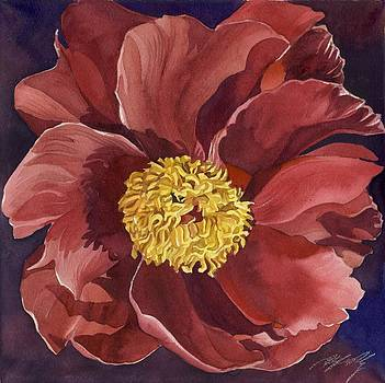 Alfred Ng - red red peony