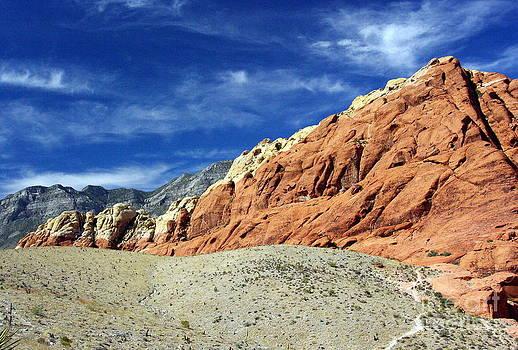 Red Rock Blue Sky by Gwendolyne Allen