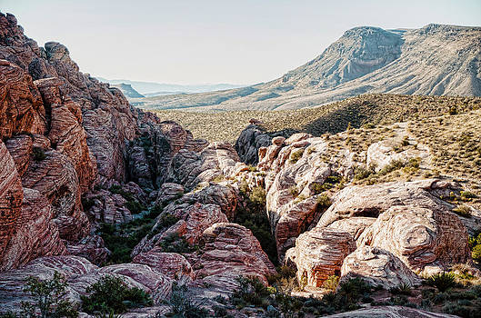 Red Rock Canyon Nevada by Arnold Despi