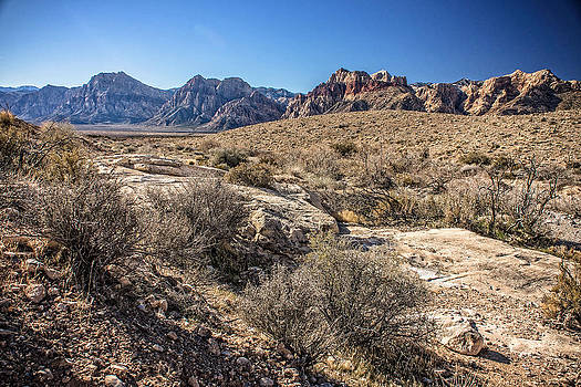 Red Rock Canyon Wash by Bill Boehm