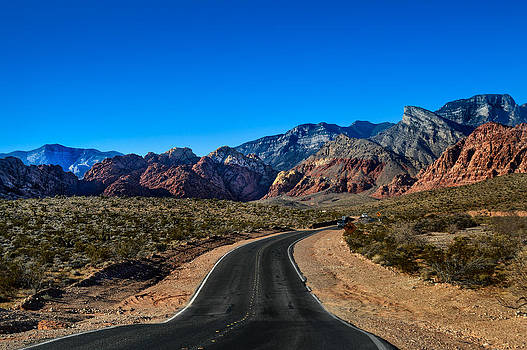 Red Rock Canyon by William Shevchuk