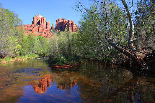 Red Rock Crossing Oak Creek by Laurie Larson