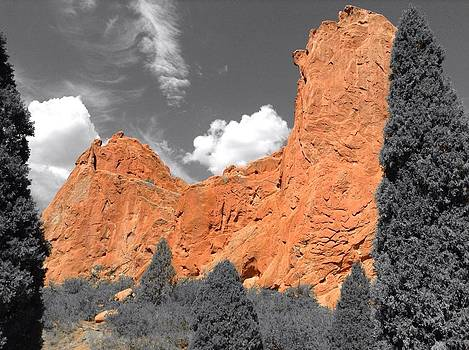 Red Rocks at Garden of the Gods by Barry Miller