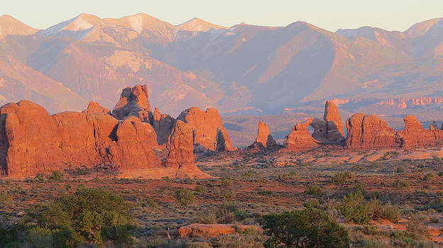 Red Rocks in Arches National Park by Diane Mitchell