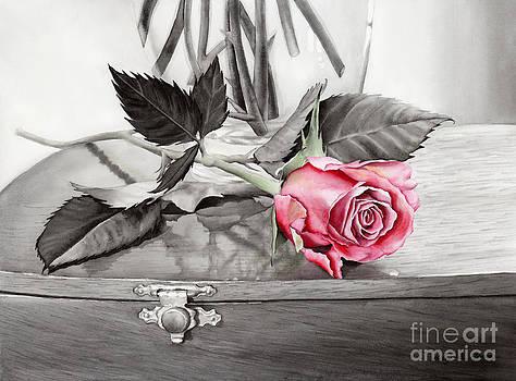 Hailey E Herrera - Red Rosebud on the Jewelry Box