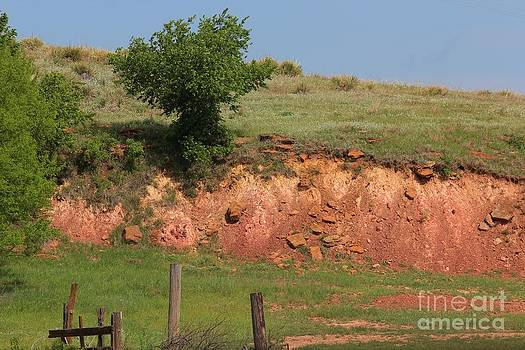 Red Sandstone Hillside with Grass by Robert D  Brozek