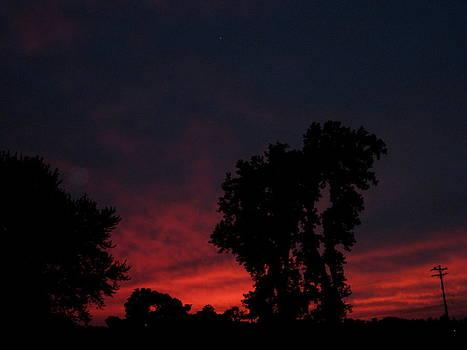 Red Sky In Ohio by Lele Pennington