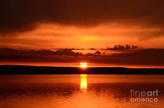 Marianne Kuzimski - Red Sky in the Morning