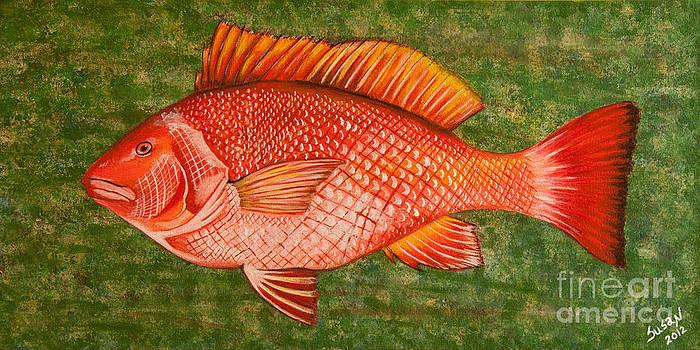 Red Snapper by Susan Cliett
