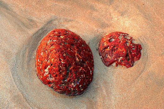 Jenny Rainbow - Red Stones on the Sand