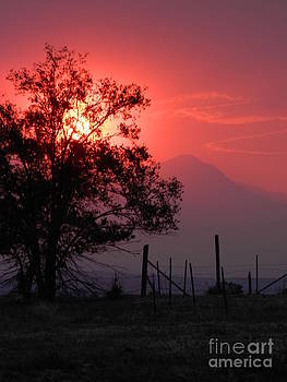 Red Sunset by Michelle Frizzell-Thompson