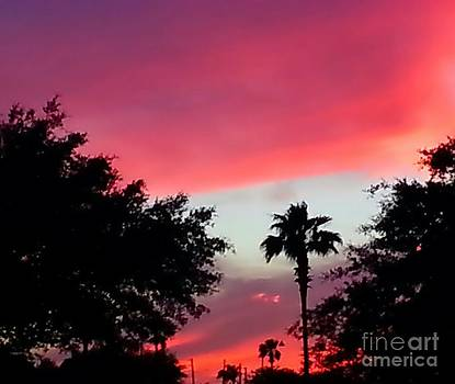 Red Sunset Silhoutte by Imani  Morales