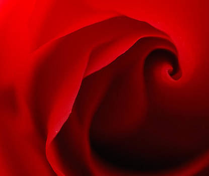 Red Swirl by Sarah Rodefeld