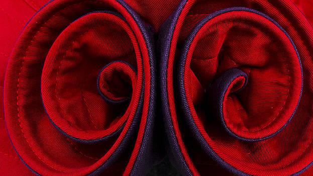 Red Swirls Purple Trim by Joseph Kelley