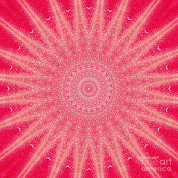 Red   by Tatjana Popovska