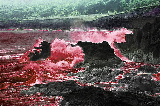 Daniel Furon - Blood in the Water