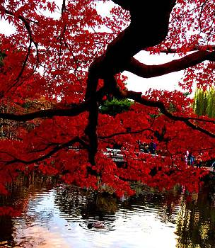 Red Tree by Julia Ivanovna Willhite