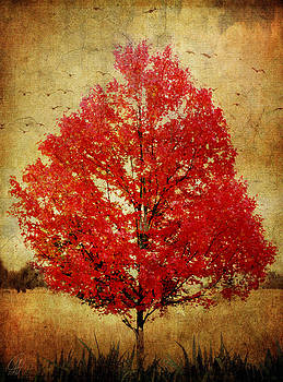 Red Tree by Margaret Hormann Bfa