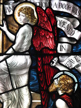Red Winged Angel by David Hinchen