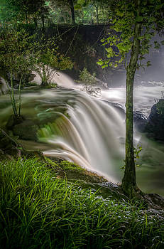 Reedy River Falls by Donnie Bagwell