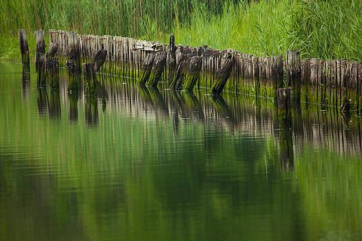 Karol  Livote - Reflecting Green