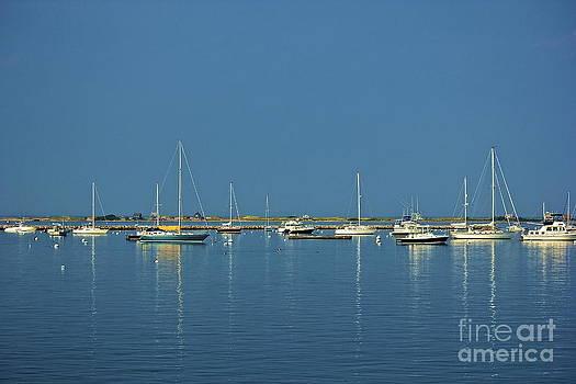 Amazing Jules - Reflecting Masts